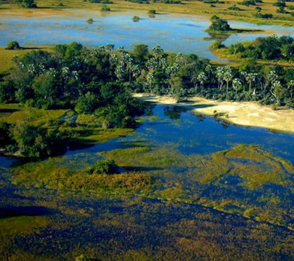 Chutes Victoria, Chobe, Savute / Okavango