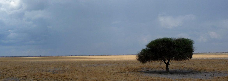 Chutes Victoria, Chobe, Linyanti, Okavango et Kalahari
